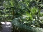 Alla scoperta del Bosco Pittoresco